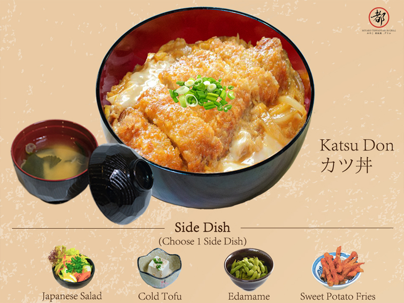 Donburi meal for lunch!